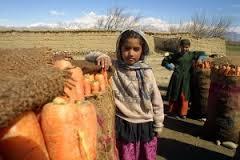 afghanistan-79526_960_720